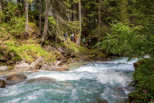 nationalpark-hohe-tauern-2013-07-24-0897F2F92B78-5FC4-6F02-40DA-77AC9F268F67.jpg