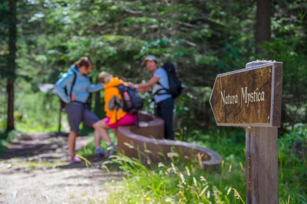 nationalpark-hohe-tauern-2013-07-24-09484B4A7EA0-1276-FD15-B4EF-5D891772F09B.jpg